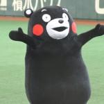 九州の野生のクマは絶滅したが、熊本のキャラクターはクマのくまモンである