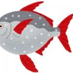 深海魚のアカマンボウは変温動物ではなく魚類初の「恒温魚」